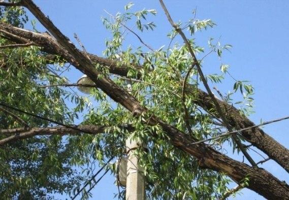 В связи с непогодой произошли повреждения на линиях связи!